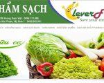 Thiết kế website thực phẩm sạch