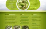 Thiết kế website bán cây cảnh,bon sai độc đáo giá cả hợp lý