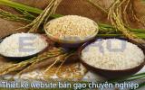 Thiết kế web bán gạo chuyên nghiệp, chất lượng cao