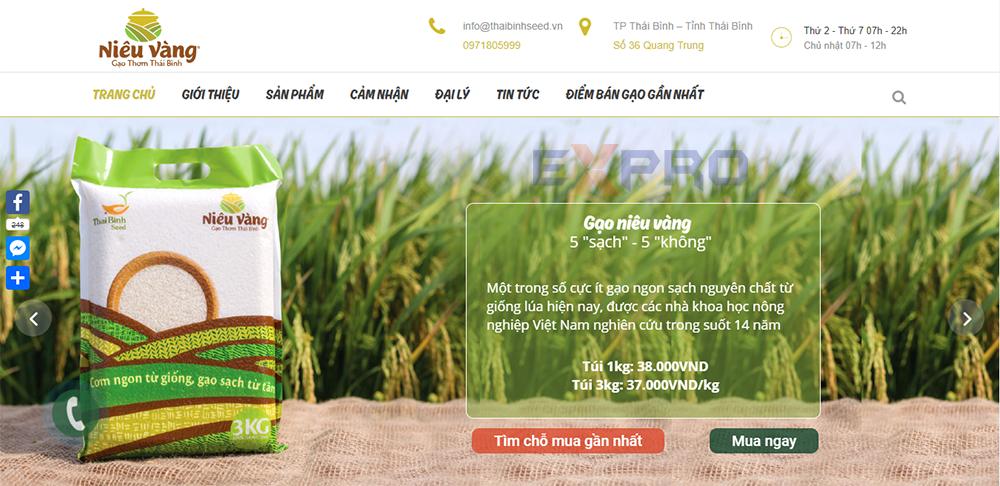 Thiết kế web bán gạo chuẩn SEO