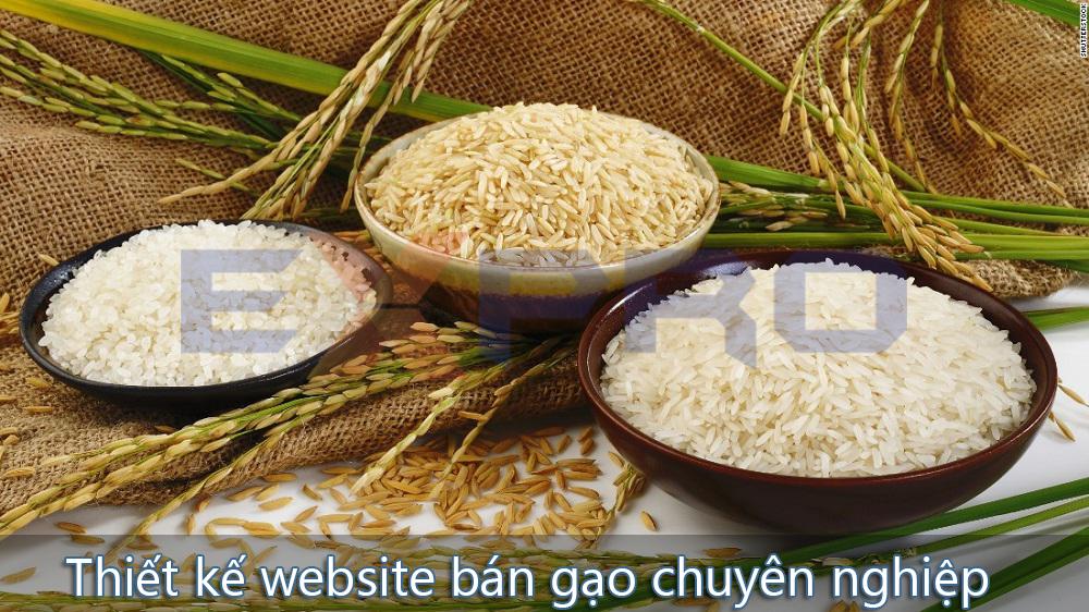 Thiết kế web bán gạo chuyên nghiệp