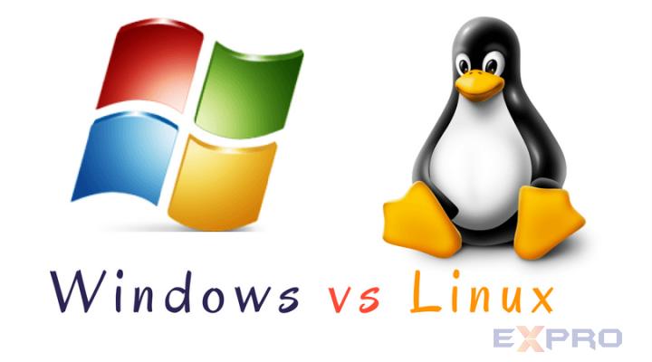 Chọn Hosting windows hay linux
