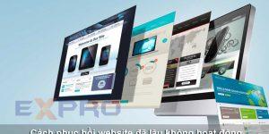 Cách phục hồi website đã lâu không hoạt động